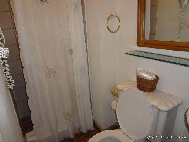 アット ウィンド チャイムズ ブティックホテル バスルーム、シャワーのみ
