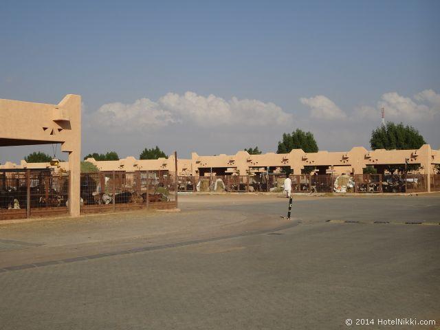 アルアインのラクダ市場
